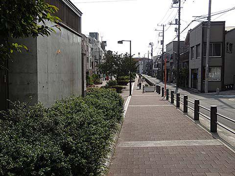 DSC05552-hakuraku_0922.jpg